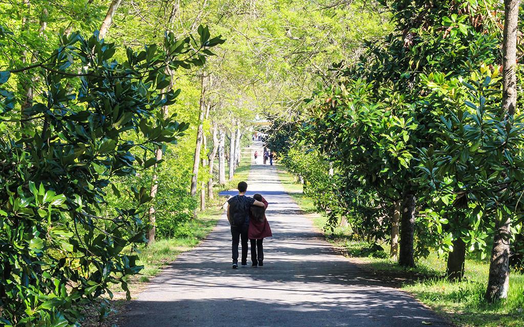 Atatürk Arboretumu Giriş Ücreti